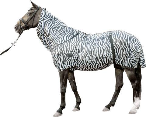 HKM Ekzemerdecke Zebra